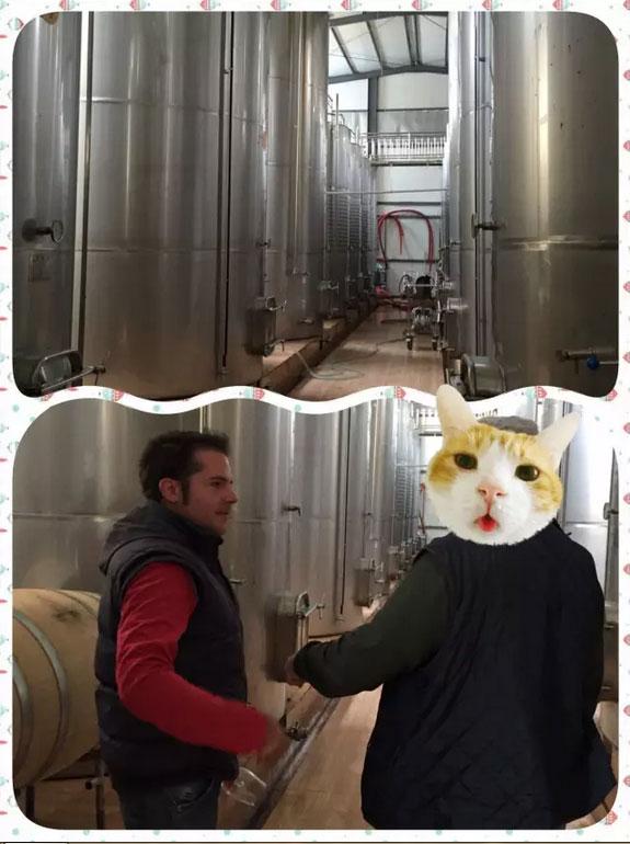 在采访过程中,一个法国木桶塞商来到了酒庄,与Jose交谈起来,全程法语,栗子表示只能听得懂Quoi?