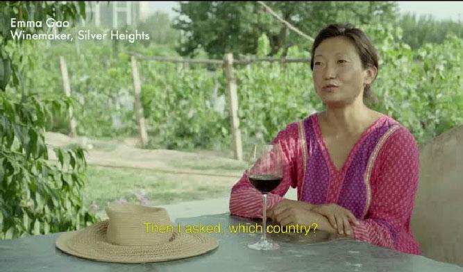 NOWNESS的美食探密:宁夏的葡萄酒人